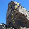 Dragon Scales topo