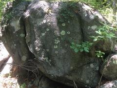 Rock Climbing Photo: King Forest 3 - KF3