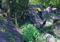 Rock Climbing Photo: Excellent Problem