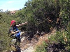 Rock Climbing Photo: heading to the wall