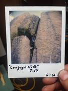 Rad 5.10- Onsight, shot on Polaroid Sx-70.