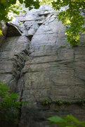 Rock Climbing Photo: The fern goes up the face on the right side of thi...