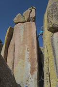 Rock Climbing Photo: Amazing lichen.