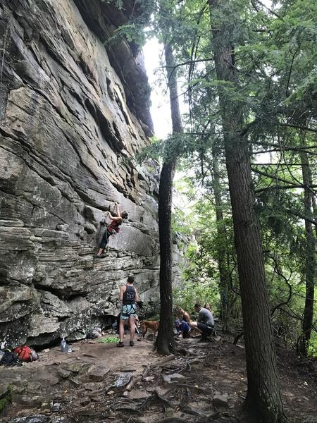 Rock Climbing Photo: Julia at the start of Railroad Tie