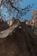Rock Climbing Photo: Starting up Wild Will's, a fun warm up route for t...