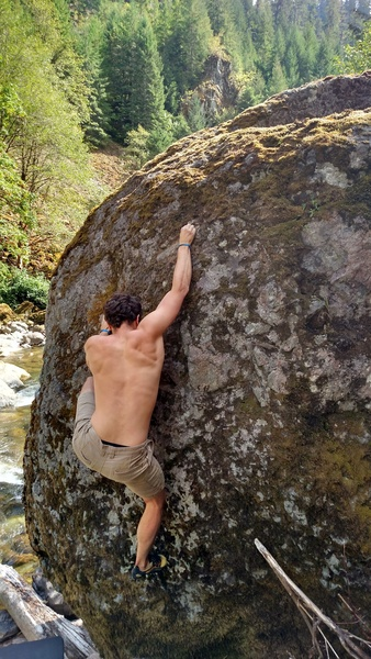 Rock Climbing Photo: Moss Boss