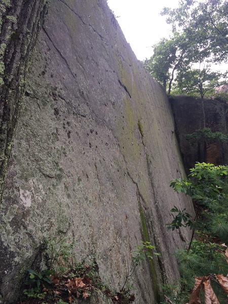 Rock Climbing Photo: PL032 - Part of the main quarry wall.
