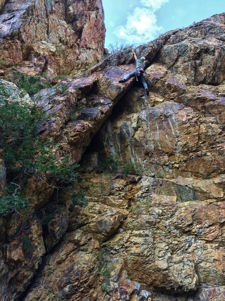Rock Climbing Photo: Lycra at its Limit (5.10), Todd H.