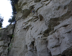 Climbing The Graduate
