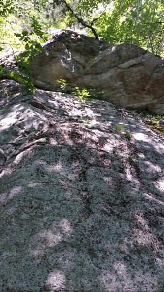 Gouda climb, identified by the licheny slab leading to a two-move roof problem, and the tree.