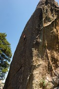 Rock Climbing Photo: Nearing the anchors, nice route in the shade in th...