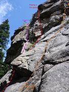 Rock Climbing Photo: Grey Jay, P1