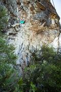 Sierra following Happy Trails