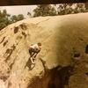 Stoney point 1991