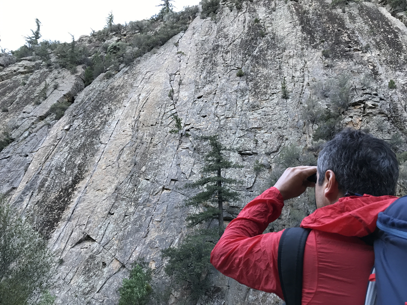 Rock Climbing Photo: Trying to spot those bolts!
