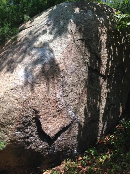 Rock Climbing Photo: Black Racer