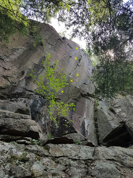 7. In the Red 5.14-