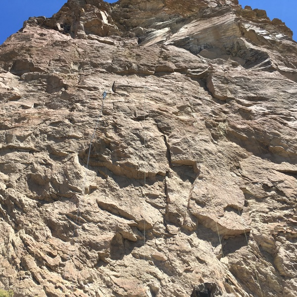 Puddy's Tower, uncleaned first pitch routes.
