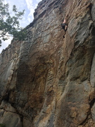 Rock Climbing Photo: Randy Lee leading Windows