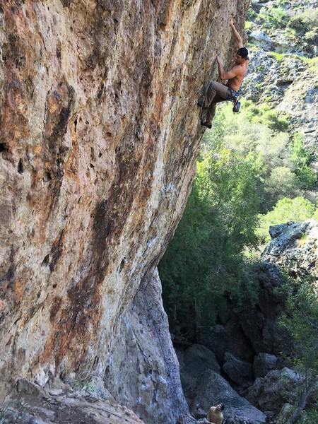Rock Climbing Photo: Nice and Steep!