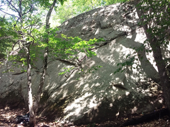 Rock Climbing Photo: Route starts by the twin trees left of center in t...