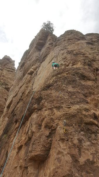 Brittany climbing