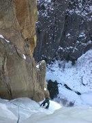 Rock Climbing Photo: Leaning Tree