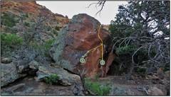 Rock Climbing Photo: 2. Palmar Grasp.