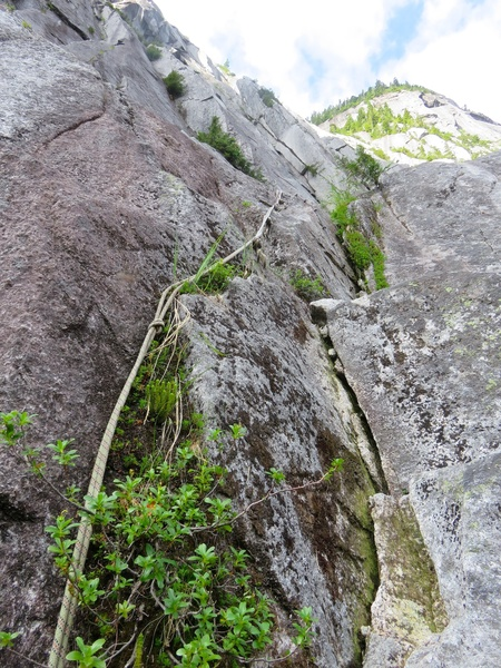 Rock Climbing Photo: Fixed rope leading up to Tigger Ledge.