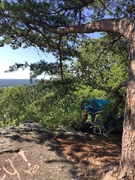 Rock Climbing Photo: rappel tree at top.  bolts are to the right of tre...