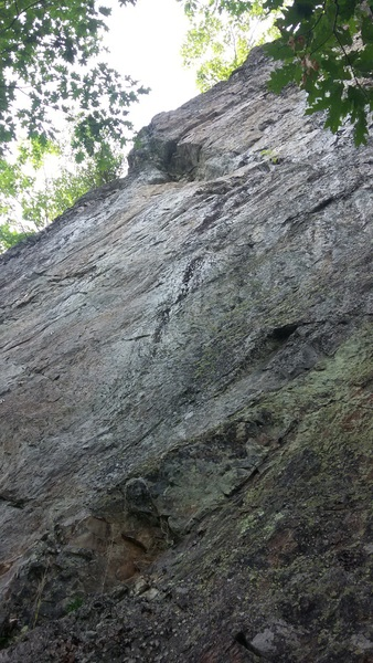 The bolt line and anchors.  This photo does not do the climb justice, it's in a really good location.