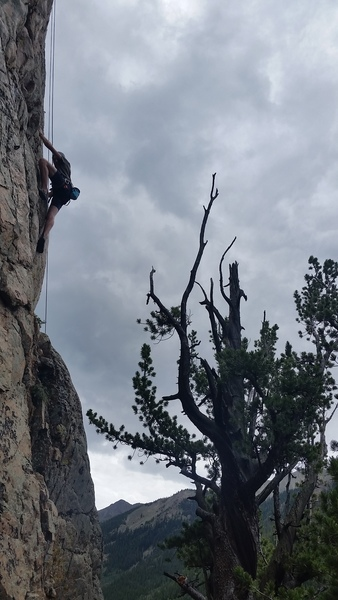 Sage with a high foot on the upper crux.