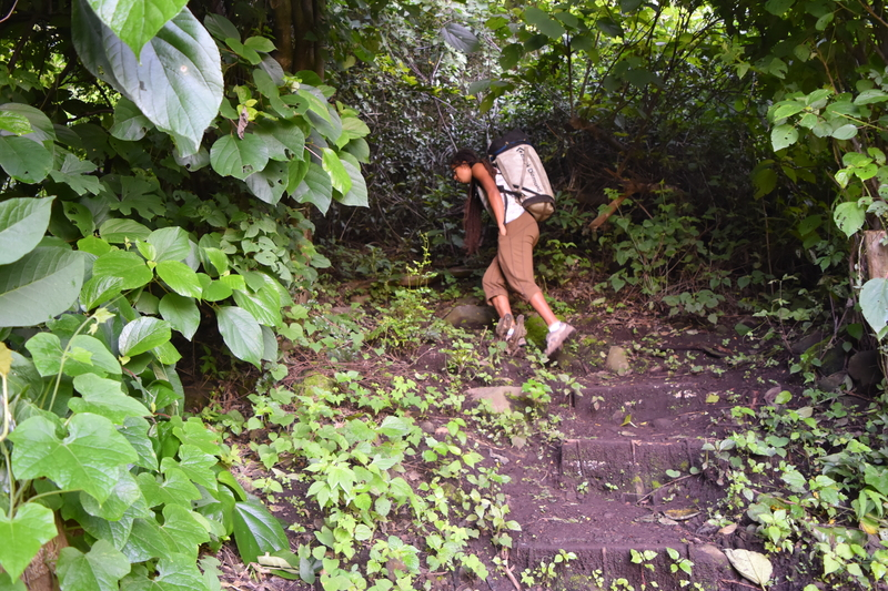 11. Path up to the crag. At this point is where you make a left turn and go into more jungle-y terrain.