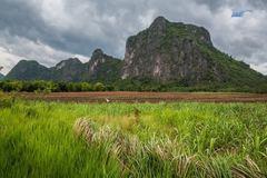 Rock Climbing Photo: DongLan Forest sport climbing