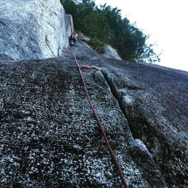 Rose on Lead of the St Vitus direct variation. Don't miss out on this crack, thin but good.