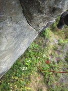 Rock Climbing Photo: Steep and surprisingly splitter