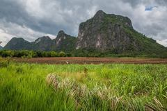 Rock Climbing Photo: Lime Stone Mountain at Dong Lan Forest sport climb...