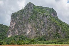 Rock Climbing Photo: Lime Stone mountain in Dong Lan Forest, new develo...