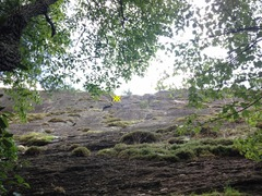 Rock Climbing Photo: Cedar Cliff