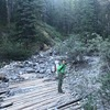 There is a trail that splits left here, but keep going up keeping on the right of the creek.