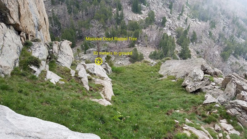 Rock Climbing Photo: Look for this grassy ledge to find the rappel tree