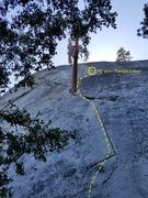 Rock Climbing Photo: Beginning of the tree route Jul 14, 2017