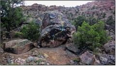 Rock Climbing Photo: Windowpane Rattle.