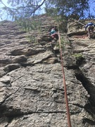 Rock Climbing Photo: Cassie having fun a little to the right of the bol...
