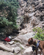Rock Climbing Photo: This route is next to the tall tree. Great place t...