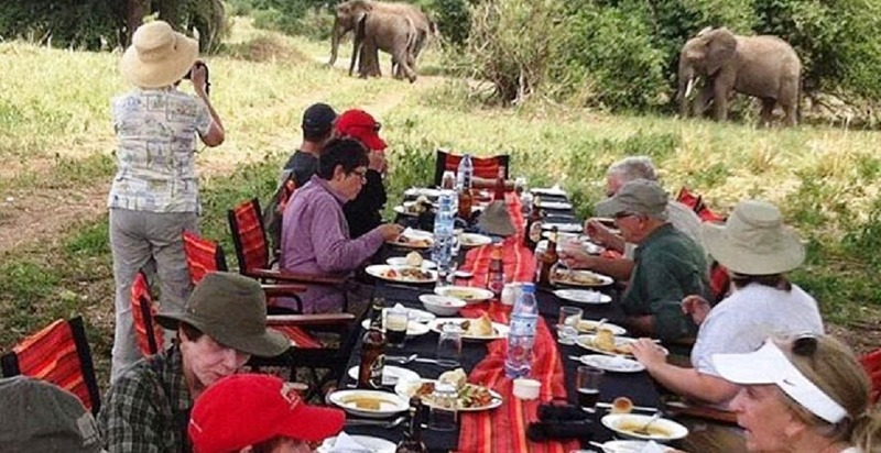 Srengeti safari