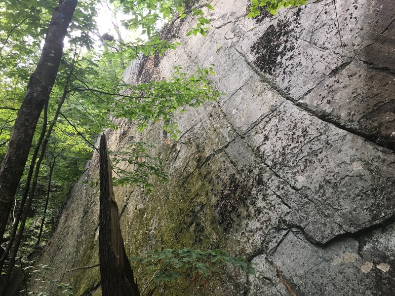 Rock Climbing Photo: Sport Wall. L-R: Ambidextrous, High Times, Sheiste...