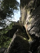"Rock Climbing Photo: full of moss, not my fav route that day but ""..."