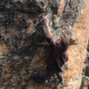 Gripping hard on the crux pinch.