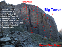 Topo To Pink Wall